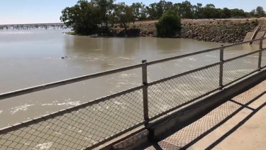 Water flows through into Lake Pamamaroo in the Menindee Lakes system earlier this month. Environmental groups are among those concerned that future flows will be constrained if upstream farmers are licensed to capture more water during floods.