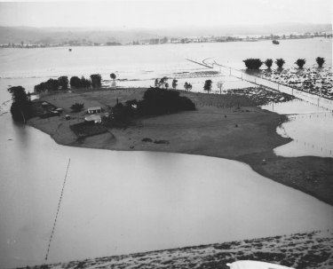 Farm surrounded by floodwaters, south-east of Lismore, June 28, 1950