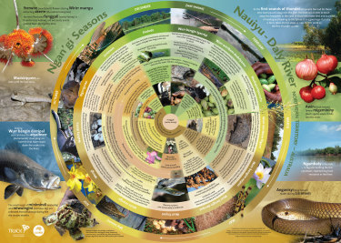 A calendar presenting seasonal knowledge from the Ngan'gikurunggurr and Ngen'giwumirri traditional owners from the Daly River region in the Northern Territory.