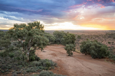 The NSW government has bought two large western NSW properties totalling more than 60,000 hectares - theLanigdoonand Metford stations - to add to the national parks estate.