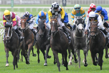 Boy wonder: Cristian Reith rides Sky Boy to victory in the Villiers Stakes.