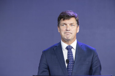 Energy Minister Angus Taylor says the new gas plant is needed to replace the Liddell coal-fired power plant scheduled to close in 2023.