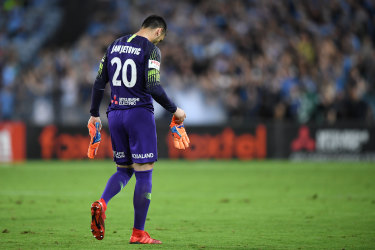 Uncertain future: Wanderers goalkeeper Vedran Janjetovic.