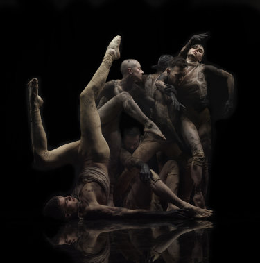 Sydney Dance Company is celebrating its 50th anniversary year.