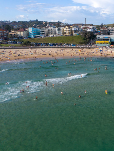 Shark nets installed at Bondi and Bronte beaches do not span the length of the beaches.