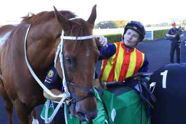 James McDonald gives Nature Strip a pat after winning the TJ Smith Stakes.