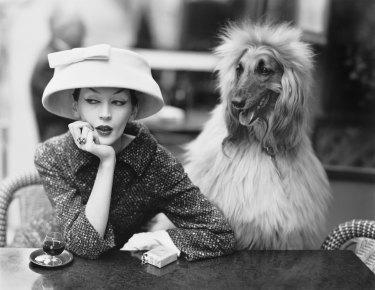 Dovima with Sacha, cloche and suit by Balenciaga, at des Deux Magots cafe, Paris, 1955.