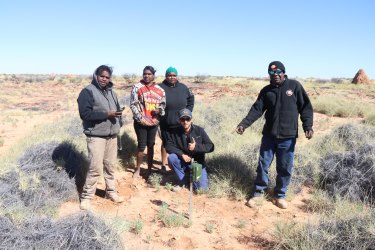 Martu rangers installing sound recorders as part of efforts to track night parrots.