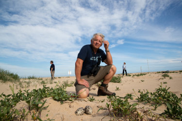 John Perkins, a veteran volunteer who has spends hundreds of hours a year protecting the beach-nesting birds of the South Durras region of the NSW South Coast.