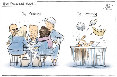 The Canberra Times editorial cartoon for Wednesday, February 13, 2019.