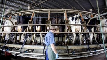 The trial can help turn dairy farms into mini-power plants.