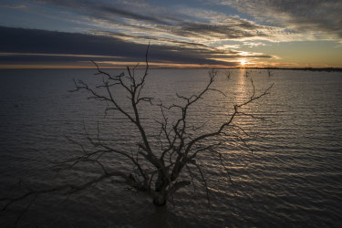 Menindee Lakes in far-western NSW have been filling for the first time in five years. Future climate predictions suggest the Barwon-Darling River which feeds them may cease to flow about 40 per cent of the time.