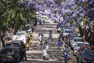 Tourists flock to the popular jacaranda-lined McDougall Street in Kirribilli.