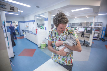 Vet James Haberfield is opening his first exotic animal vet clinic in Melbourne later this year.