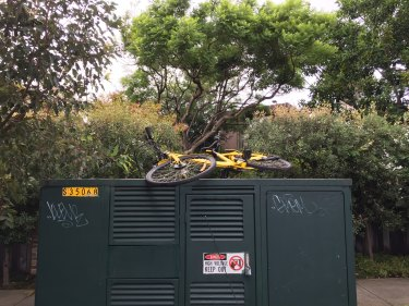An abandoned ofo share bike in Sydney