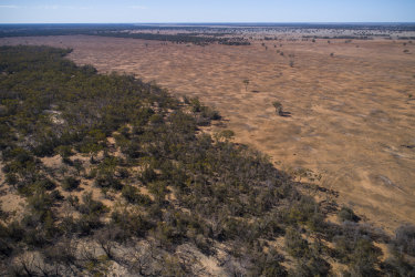 Farmland cleared north of Warren in north-western NSW. About three-quarters of land clearing is deemed 'unexplained'.