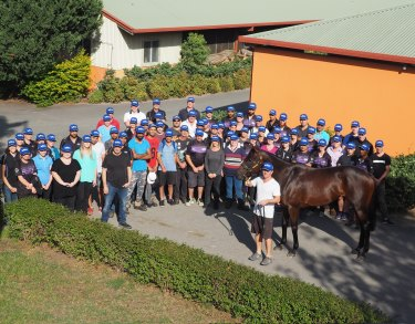 Queen of the track: Winx with the entire Chris Waller racing team.