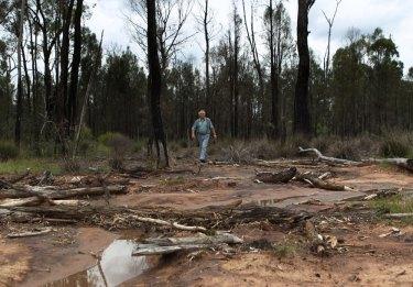 Tony Pickard, a local farmer in the region near the proposed Santos coal seam gasfield near Narrabri in northern NSW.