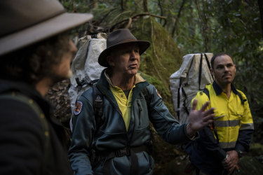 David Crust (centre), the director of the Blue Mountains division of the NSW National Parks and Wildlife Service, discusses replanting efforts for the Wollemi pine, with Berin Mackenzie (right) a parks ecologist and Atticus Fleming, deputy secretary of the service.