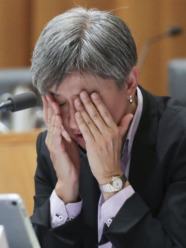 Penny Wong during a Senate estimates hearing earlier this year.