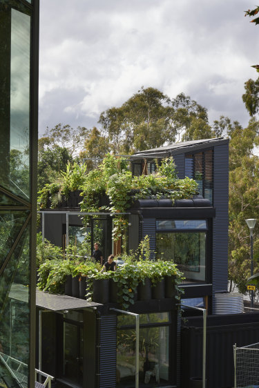 "Plants and insects help reimagine this building ""as an ecosystem""."