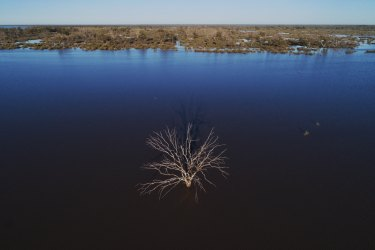 The Narran Lakes are a terminal wetlands in northern NSW, relying on flows from the Condomine-Balone system, one of the largest in the Murray-Darling Basin.