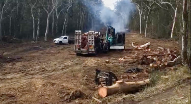 Land clearing near Jervis Bay prompted the government to admit that the destruction of sensitive habitat can be approved after the event.