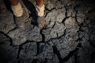 A farmer stands on the dry bed of the Namoi River in October 2019. Farmers may have water allocations cut if a planned dam on the Peel River goes ahead.