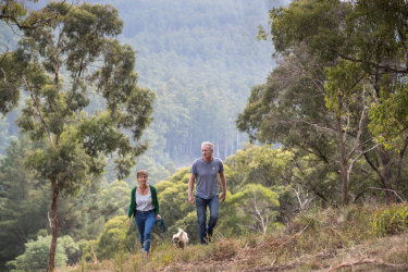 Noojee residents David Clarke and Gaye Trevan don't want the forest felled.