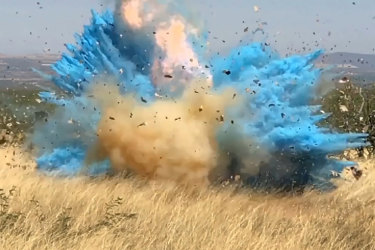 A gender reveal event in the Santa Rita Mountain's foothills, in Arizona, in 2017 ignited a bushfire.