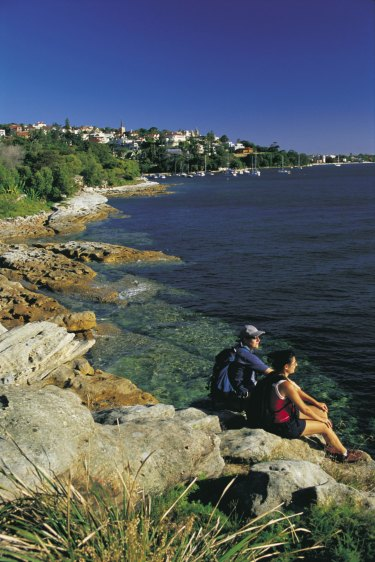 The Hermitage Coastal walk, somewhere between Rose Bay and Nielsen Park.