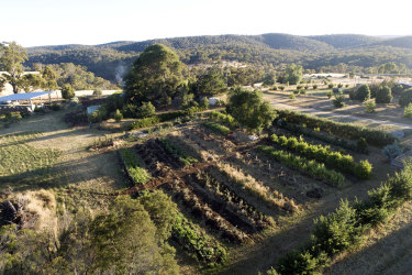An aerial view of the Glenluce property, including the productive rows.