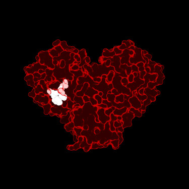 This red heart depicts the atomic structure of a COVID-19 virus protein. The white cluster inside it is a drug-like molecule that prevents the virus from replicating.