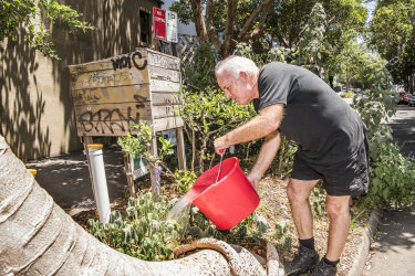 Michael Mobbs is an organiser of the Chippendale footpath garden. He uses grey water to keep the fruit trees alive