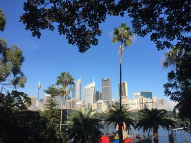 The City of Sydney is aiming to lift the amount of tree cover from about 18 per cent now to 27 per cent by mid-century as part of its effort to reduce the heat-island effect and bring other benefits to residents.