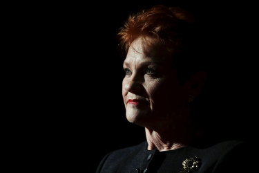 One Nation leader Pauline Hanson in Parliament on Wednesday.