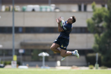 Leap of faith: The Brumbies are backing Tom Banks to be a star of the future.