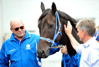 Pressure: Neil Werrett, right, and trainer Peter Moody with Black Caviar after announcing her retirement.