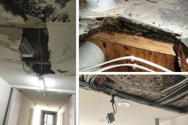 Residents recount widespread outbreaks of dangerous black mould and rotting carpet and floorboards.
