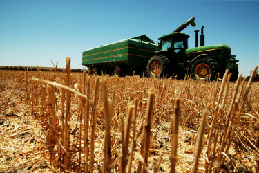 Farmers were expected to take advantage of the instant asset write-off to help bring in a bumper post-drought wheat crop.
