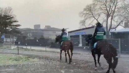 Arctic blast hits Victoria