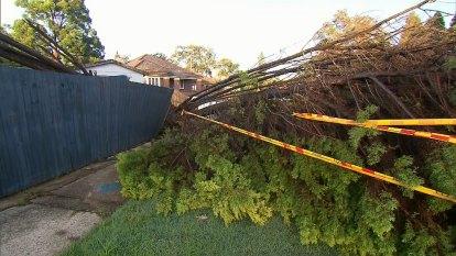 Extreme storms lash NSW