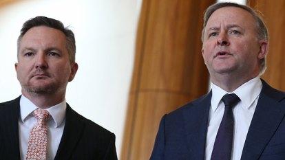 Labor leadership: Bowen v Albanese