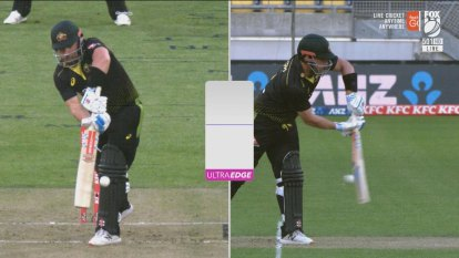 Aaron Finch survived an LBW appeal by the narrowest of margins.