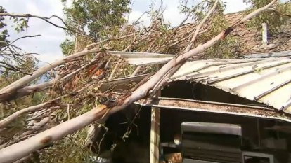 Wild storms lash Queensland's south-east