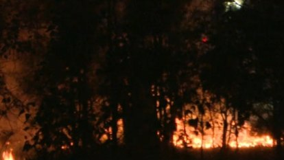 Police hunting arsonist who lit grass fire