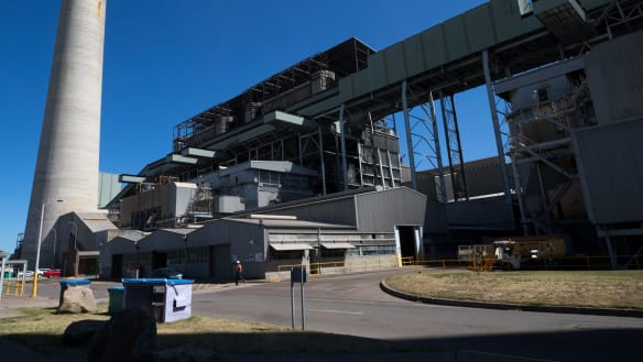 Energy operator believes NEG can do what AGL can't, or won't