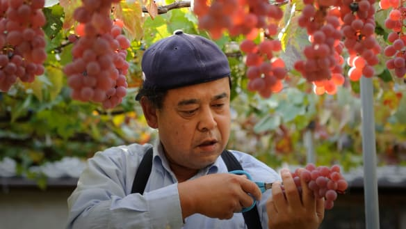 The Japanese grapes creating Australia's best white wine