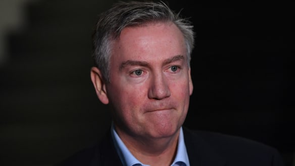 Eddie McGuire has a case over fake ad, just not against Facebook