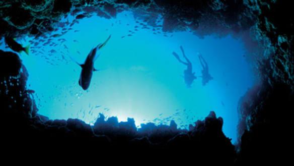 'A bit of a joke': Marine park plans stir mixed reviews
